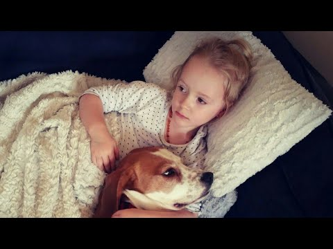 Cute dog relishes the food prepared by baby | Charlie the beagle and Laura Olivia