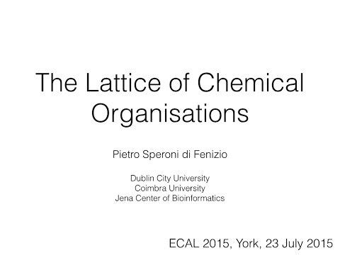 The Lattice of Chemical Organisations