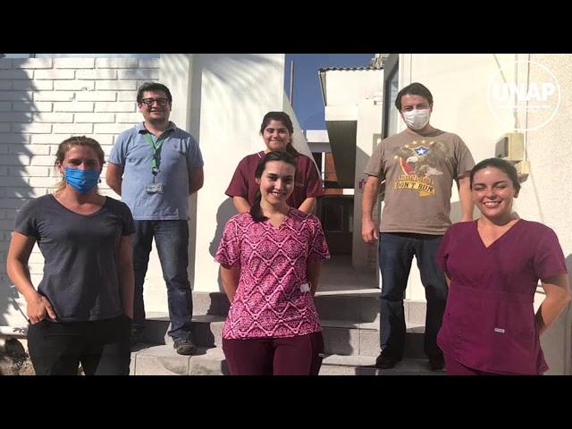 Contribución de UNAP a la superación de la crisis sanitaria por coronavirus