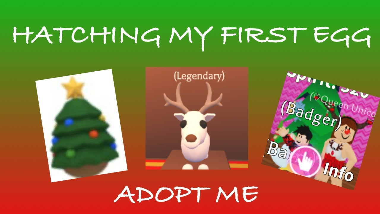 Hatching my first Christmas egg in adopt me! 😱 - YouTube
