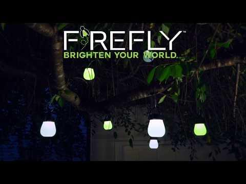 Firefly Solar Lantern SKU# PS7396 - Wind & Weather