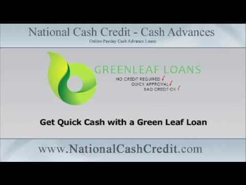 Payday loans from credit union photo 9