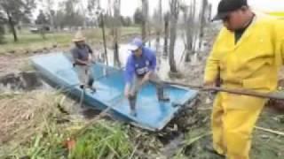 Rescate chinampas zona de Xochimilco