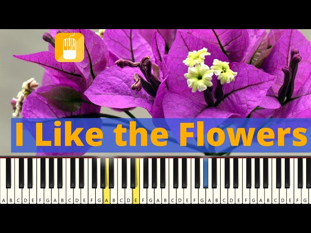 I Like The Flowers piano tutorial. Zeer eenvoudig.