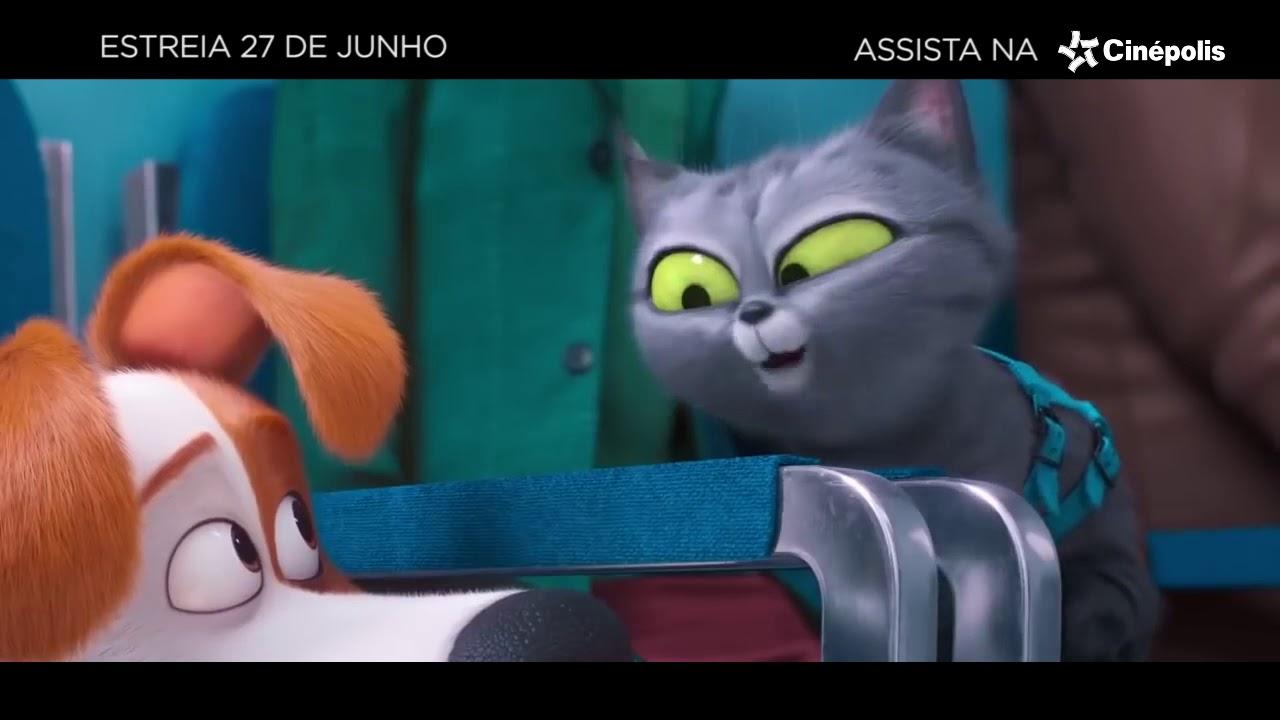 Pets - A Vida Secreta dos Bichos 2 | Trailer Oficial