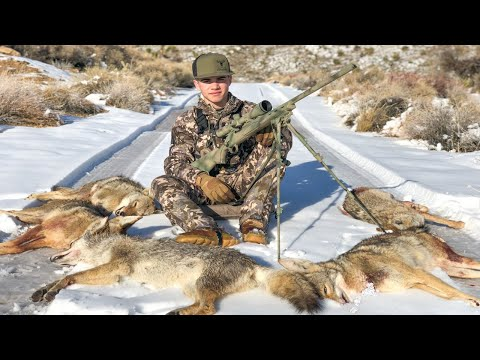 HAMMERING WINTER DOGS! Coyote Hunting With Sin City Outdoors!