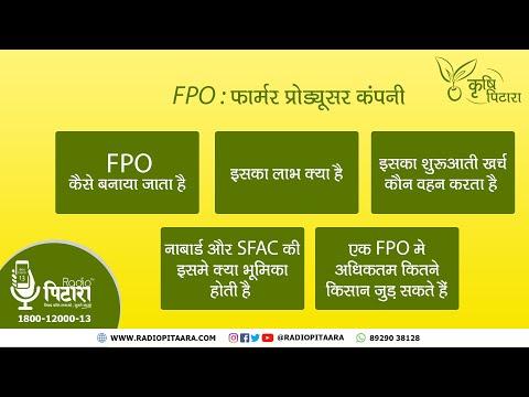 फार्मर प्रोडयूसर कंपनी (FPO - Farmer Producer Organisation) के बारे में जानिए सब कुछ