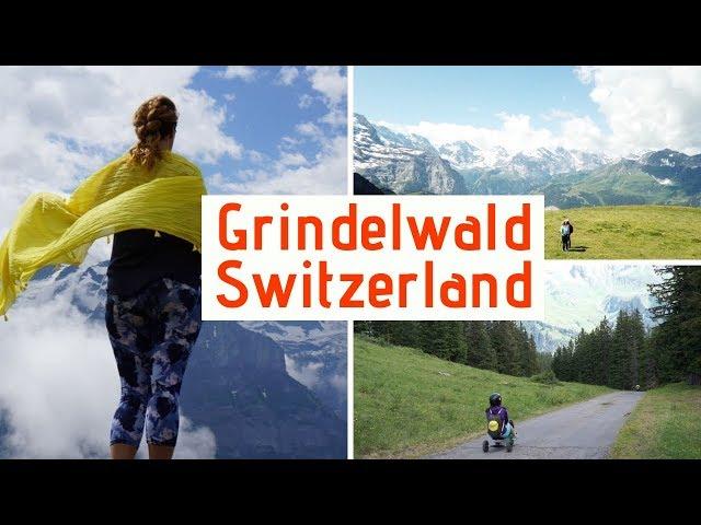Mountain Coaster Grindelwald Switzerland   TravelerBase