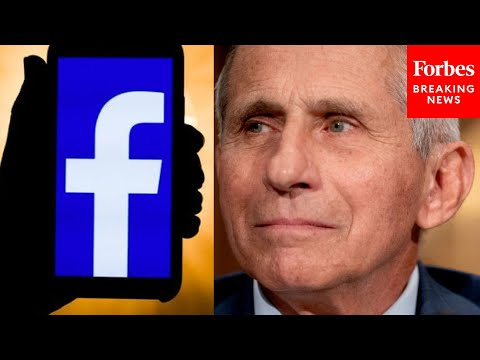 Mike Braun Questions Dr. Fauci Over Facebook COVID-19 Policies