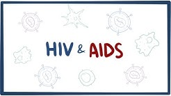 HIV & AIDS - signs, symptoms, transmission, causes & pathology
