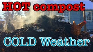 very HOT compost in very COLD weather