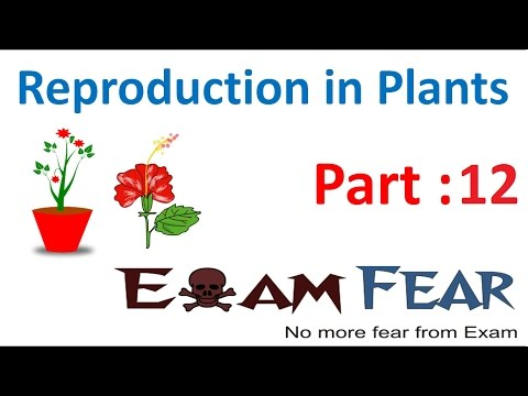 Biology Reproduction in Plants Part 12 (Flower Structure) Class 7 VII