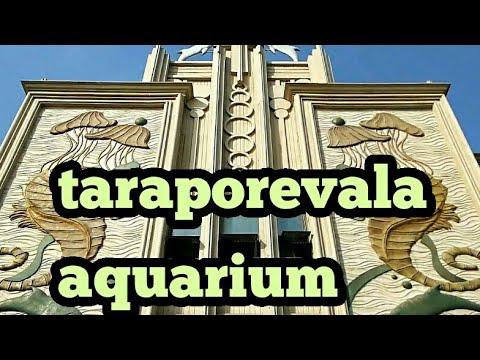 Taraporewala aquarium Nariman point Mumbai