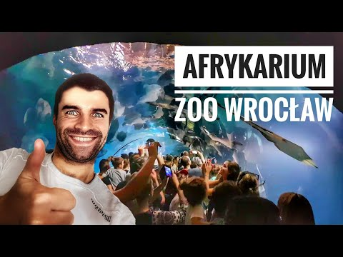 Afrykarium Oceanarium ZOO Wrocław 2017