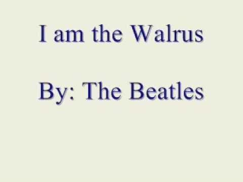 am the walrus lyrics смотреть the beatles i am theI'm The Walrus Lyrics