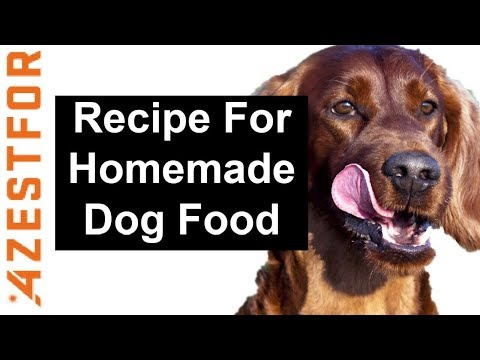 recipe-for-homemade-dog-food-🐶-salmon-quinoa-amp-broccoli