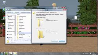 Sims 3 Mods/Packges installieren deutsch