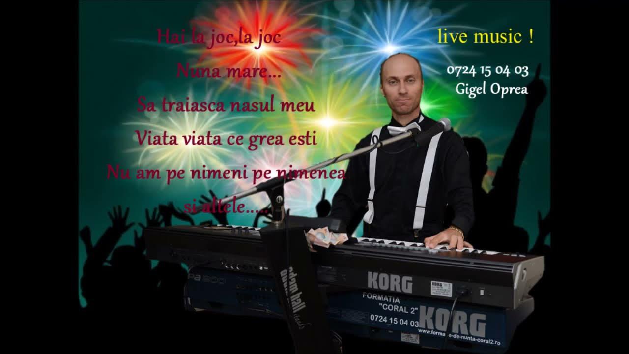 Download TURBO PETRECERE..cu Gigel Oprea, muzica nunta !