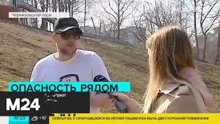 Как горожане соблюдают режим самоизоляции - Москва 24