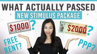 LAWYER EXPLAINS | New Stimulus Package, What Actually Passed and What Didn't