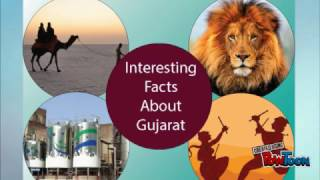 Amazing facts about gujarat