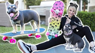 Just Me Teaching My Dog To Skateboard