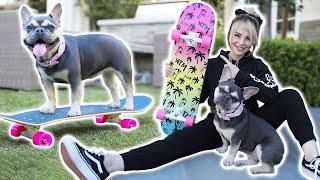 Just Me Teaching My Dog To Skateboard