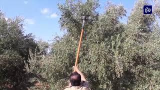"""مدير عام البحوث الزراعية و""""جيدكو"""" يتفقدان مشاريع ريادية في عجلون - (2-11-2019)"""