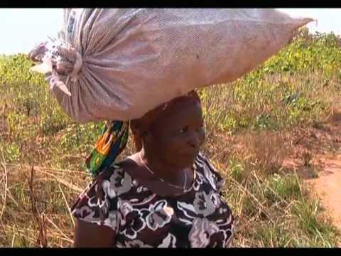 Lunda-Norte: Registados casos de camponesas assassinadas e com mutilação genital   TV Zimbo  