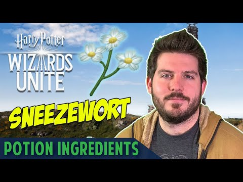 Sneezewort - Invigoration Draught Potion