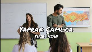 Yüce insan - Yaprak Çamlıca ( English translation )  Kalp Atışı song lyrics