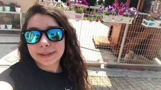 Harika Bayram Alışverişim 👗🍬 Eğlenceli  Video