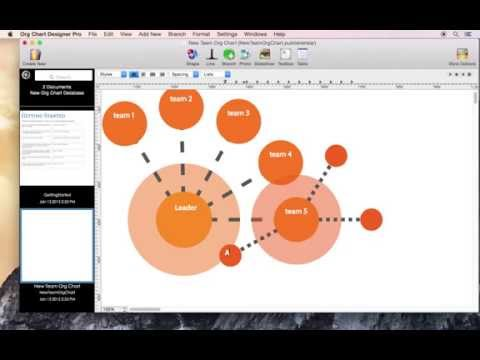 Create a network diagram using Org Chart Designer Pro for Mac