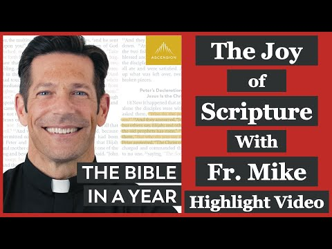 The Joy of Scripture - Fr. Mike Schmitz Interview Highlights