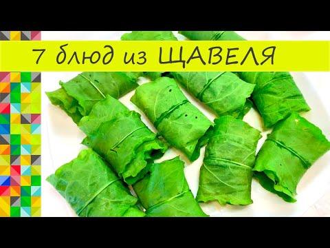 Что приготовить из Щавеля 7 блюд на любой случай Вкуснятина необыкновенная