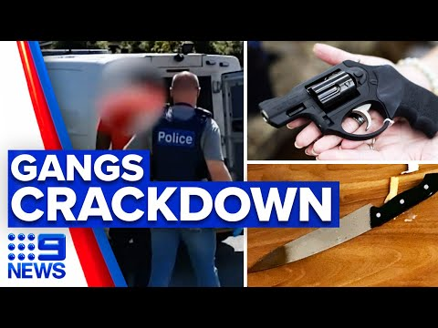 Numerous guns seized from youths in gangs crackdown | 9 News Australia