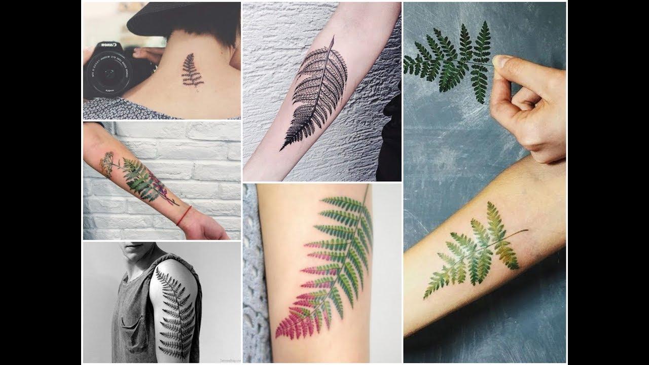 23f271164 Top-30 Most Beautiful Fern Leaf Tattoo Design Ideas - YouTube