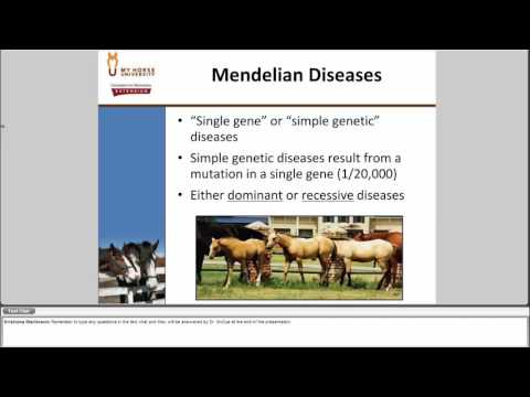 Equine Genetics 101