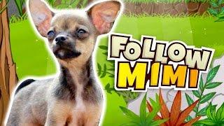EL JUEGO EN HONOR A MIMI | Follow Mimi