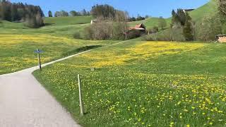 【スイス・アッペンツェル】レンタル電動マウンテンバイクで急斜面を疾走してみた