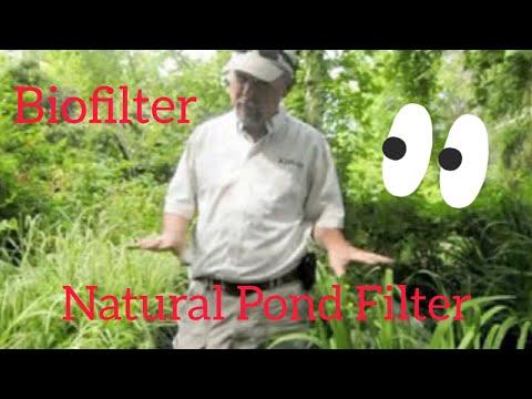 Biofilter for recirculating pond.mpg