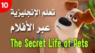تعلم الإنجليزية عبر الأفلام والتلقين السمعي (10) The Secret Life of Pets