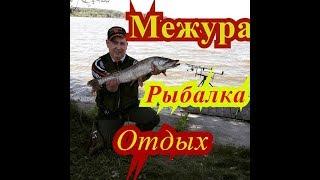 Рибалка / #МЕЖУРА / Відпочинок , залікова щука / #PIKE
