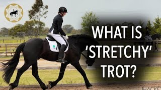 HOW TO DO STRETCHY TROT? - Dressage Mastery TV Episode 202