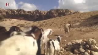 Jenseits von Eden - Der Jahrtausendfund - Terra X