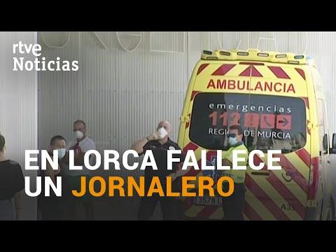 Muere un JORNALERO en LORCA, MURCIA, y el DUEÑO de la EXPLOTACIÓN pasa a disposición judicial | RTVE