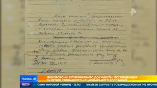 Минобороны рассказало о том, как словаки встречали Красную Армию