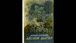 Михаил Пришвин   Лесной шатёр аудиокнига