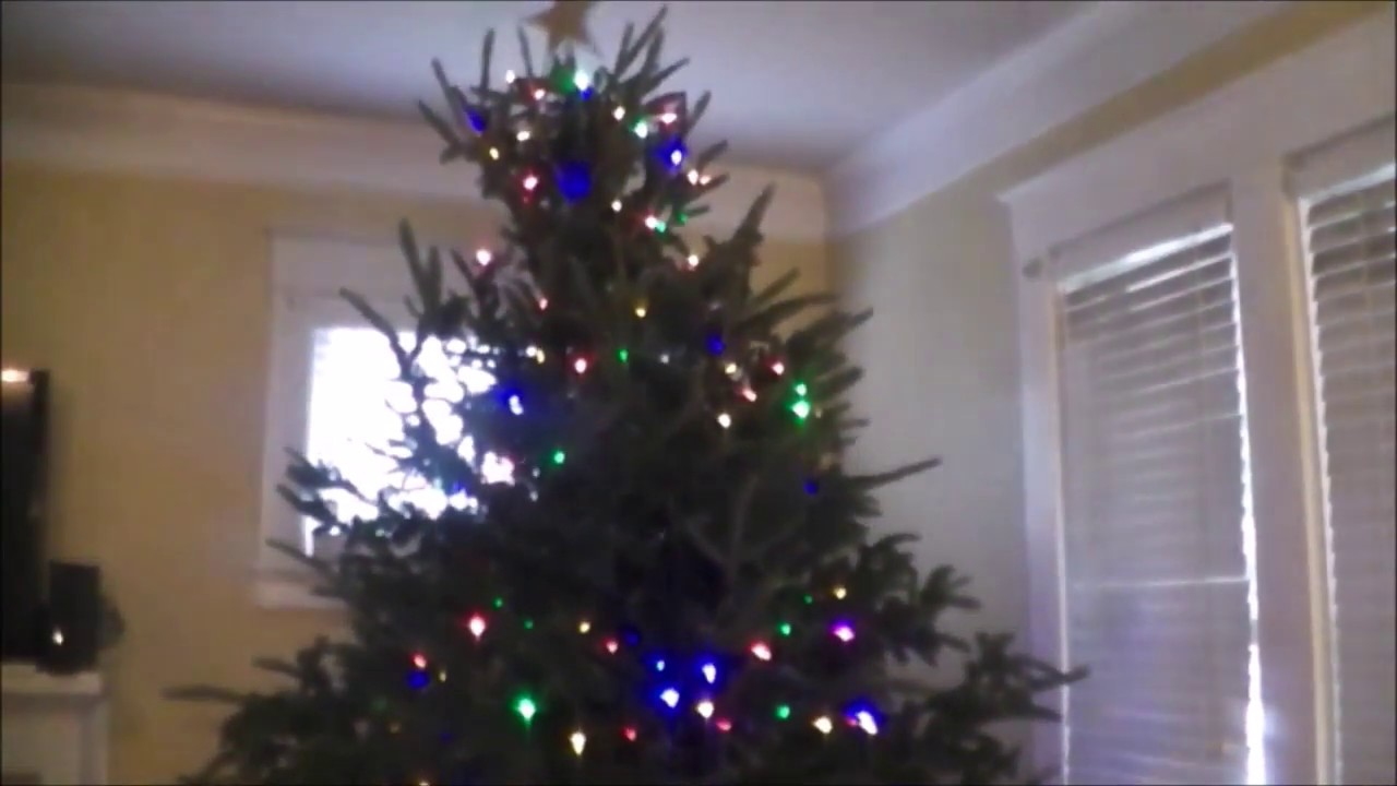 a griswold christmas tree