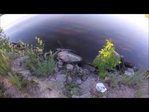 Canada Day Fishing- Winnipeg River